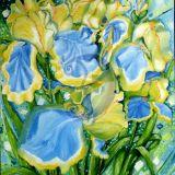 Geltonieji irisai