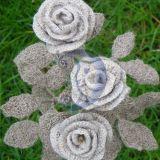 linines rozes