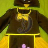 Vištytės, vištos karnavalinis kostiumas