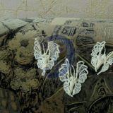 Вспоминая лето (бабочки)
