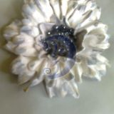 Balta gėlė