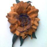 Dykumų rožė